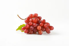 Washed red grapes Royalty Free Stock Photo