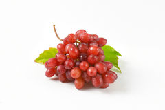 Washed red grapes Stock Photography