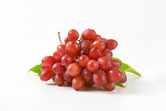 Washed red grapes Stock Images