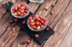 Washed ripe gooseberry Royalty Free Stock Photo