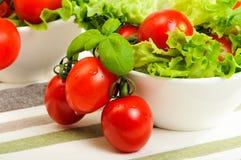 Washed Salad Stock Images