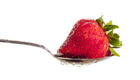 Washed Strawberry Ready to Eat Stock Images