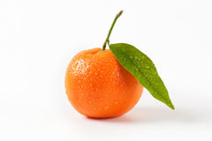 Washed tangerine with leaf Stock Image