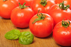 Washed Tomatoes Royalty Free Stock Photography