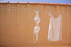Washed underwear drying Royalty Free Stock Images