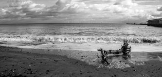 Washed Up. A piece of debris washed up along Clacton shore Stock Photography