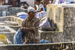 A washer at the Dhobi Ghat in Mumbai wrings his clothing in the Dhobi Ghat in Mumbai Stock Photography