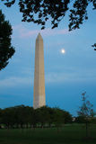 Washginton monument, Washington, DC Arkivfoton