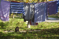 Washing. And clothes drying in the street Royalty Free Stock Photo