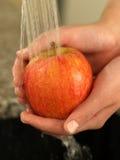 Washing apple Stock Image
