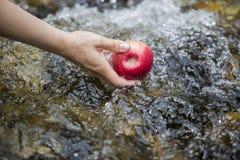 Washing an apple Royalty Free Stock Photos