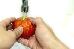 Washing apple. Healthy eating concept. Red Apple royalty free stock photos