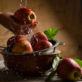 Washing apples with water splashes Royalty Free Stock Photography