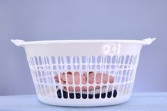 Washing Basket Stock Image