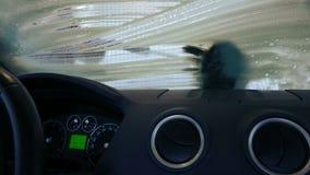 Washing car stock video