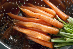 Washing Carrots Stock Image