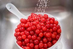 Washing cherries Royalty Free Stock Photography