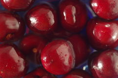 Washing cherries in fresh water Royalty Free Stock Photos
