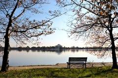 Washing DC Jefferson Memorial Royalty Free Stock Image