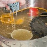 Washing dishes Stock Image