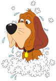 Washing Dog. The  clip-art of the brown dog that has a bath Stock Photography