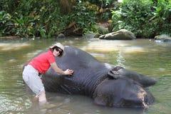 Washing elephant Royalty Free Stock Images