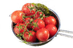 Washing fresh tomatoes Stock Photo