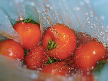 Washing fresh tomatoes Royalty Free Stock Photography