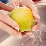 Washing fresh vegetables Royalty Free Stock Photography