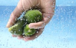 Washing fruits and vegetables Royalty Free Stock Image