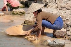 Washing gold in the river Royalty Free Stock Photos