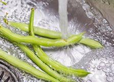 Washing Green Bean Vegetables Royalty Free Stock Image