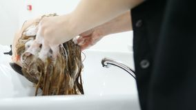 Washing hair and head massage in beauty salon before female haircut. Hairstylist washing hair with shampoo in. Hairdressing salon. Young woman in beauty studio stock footage