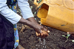 Washing hands with scarce water, Uganda. Uganda, Luwero district, village Koko-village: after that this woman has planted young vegetable plants on the farmland Stock Photos