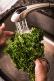 Washing Kale Stock Image