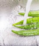 Washing Ladyfinger Vegetables II Stock Photos