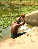 Washing in the Lake. Man washing his clothes in the lake,Bangladesh royalty free stock image