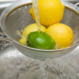 Washing lemons and lime Stock Images
