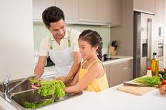 Washing lettuce Stock Images