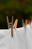 Washing line and clothes peg Stock Photos