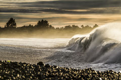 Washing machine. Large winter swell with strong off shore breeze at the Kahutara surf break. This wave is well known for this shore break called the washing Royalty Free Stock Photos