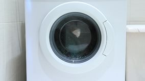 Washing machine wash clothes, the flow of foam of washing powder on the glass door.  stock video footage