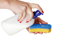 Washing mean and sponge in hands Royalty Free Stock Image
