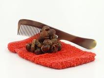 Washing nuts Stock Image