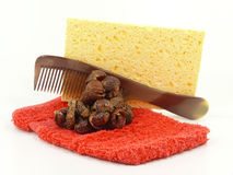 Washing nuts Stock Photo