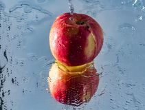 Washing one red apple with reflection and with splashes and drops of water. The process of washing one beautiful red apple with reflection and with splashes and Stock Photos