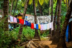 Washing in Palolem, south goa Royalty Free Stock Photos