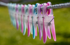 Washing pegs Royalty Free Stock Image