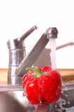 Washing pepper Stock Photography