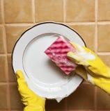 Washing Plate Royalty Free Stock Photo